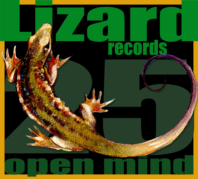 lizard 25 2d
